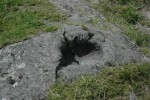 aaaa0059.jpg