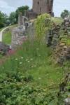 aaaa0117.jpg Ruins at Urquhart Castle on Loch Ness